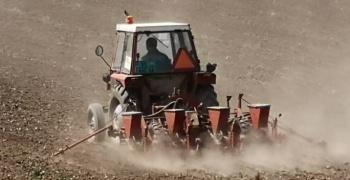 ЈАЗИП чека жетву пшенице, посејан и кукуруз